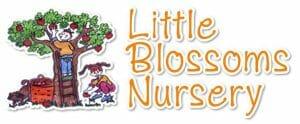 Little Blossoms Nursery